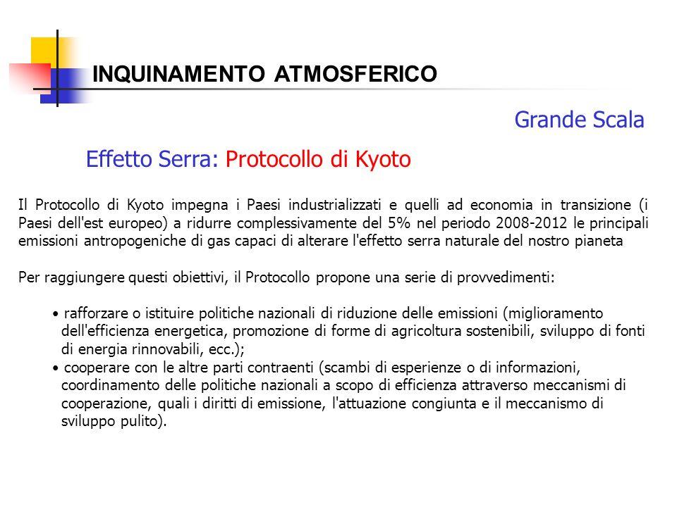 INQUINAMENTO ATMOSFERICO Effetto Serra: Protocollo di Kyoto Grande Scala Il Protocollo di Kyoto impegna i Paesi industrializzati e quelli ad economia