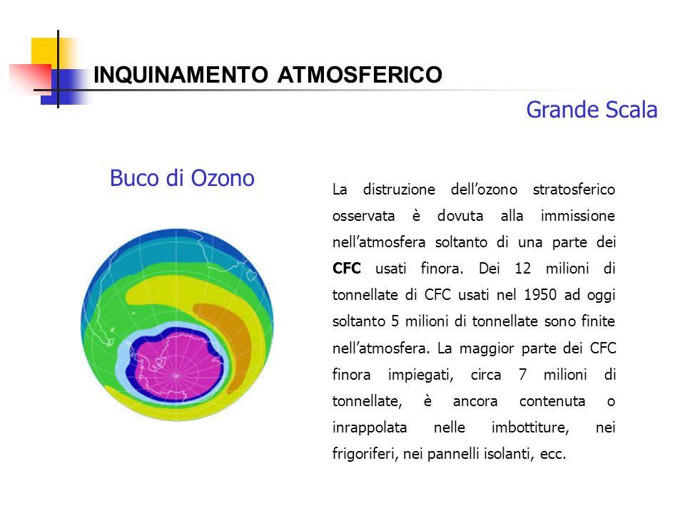 INQUINAMENTO ATMOSFERICO Buco di Ozono Grande Scala La distruzione dellozono stratosferico osservata è dovuta alla immissione nellatmosfera soltanto d