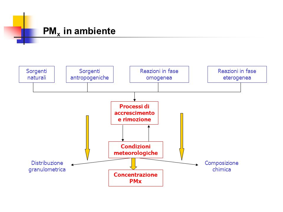 PM x in ambiente Sorgenti naturali Sorgenti antropogeniche Reazioni in fase omogenea Reazioni in fase eterogenea Processi di accrescimento e rimozione
