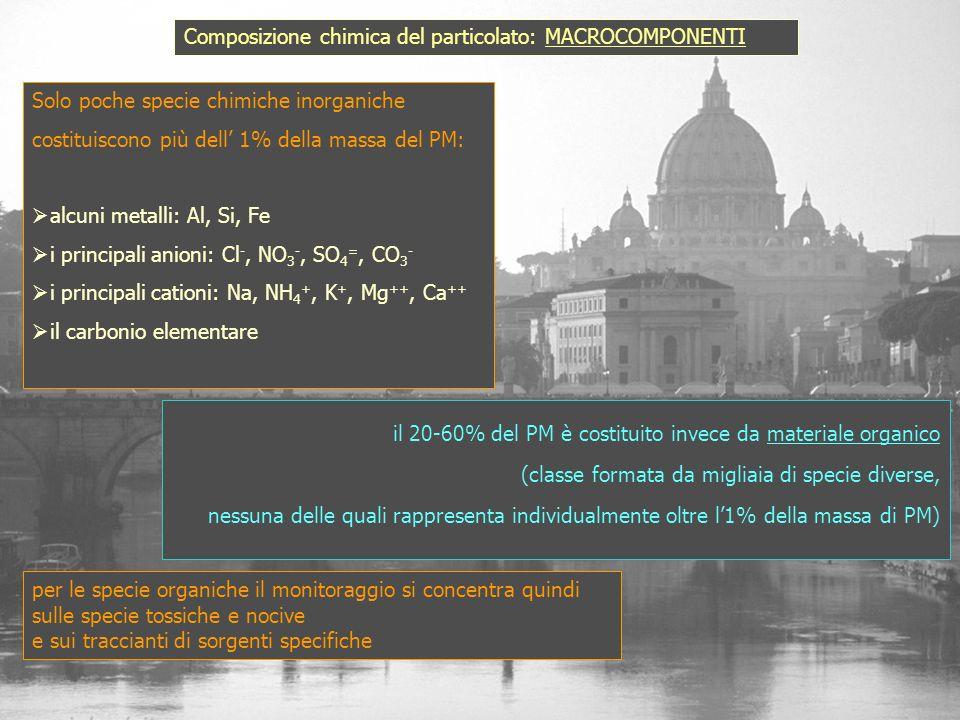 Solo poche specie chimiche inorganiche costituiscono più dell 1% della massa del PM: alcuni metalli: Al, Si, Fe i principali anioni: Cl -, NO 3 -, SO