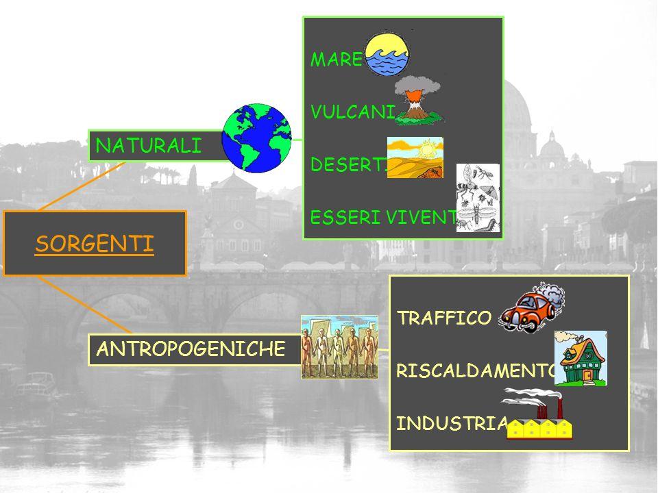 SORGENTI TRAFFICO RISCALDAMENTO INDUSTRIA ANTROPOGENICHE NATURALI MARE VULCANI DESERTI ESSERI VIVENTI