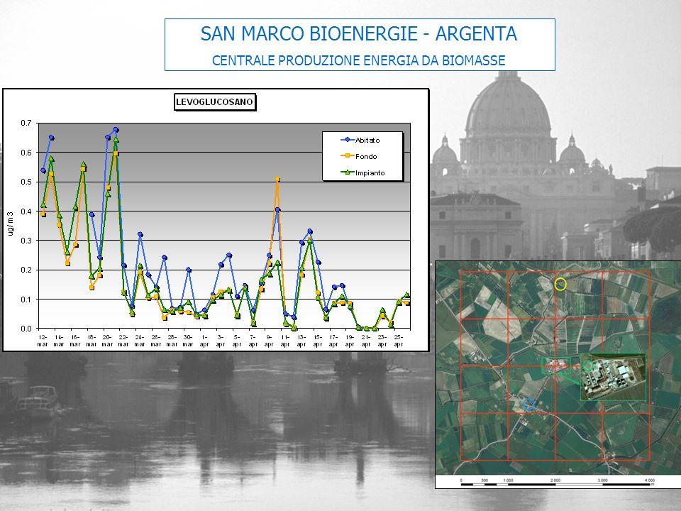 SAN MARCO BIOENERGIE - ARGENTA CENTRALE PRODUZIONE ENERGIA DA BIOMASSE