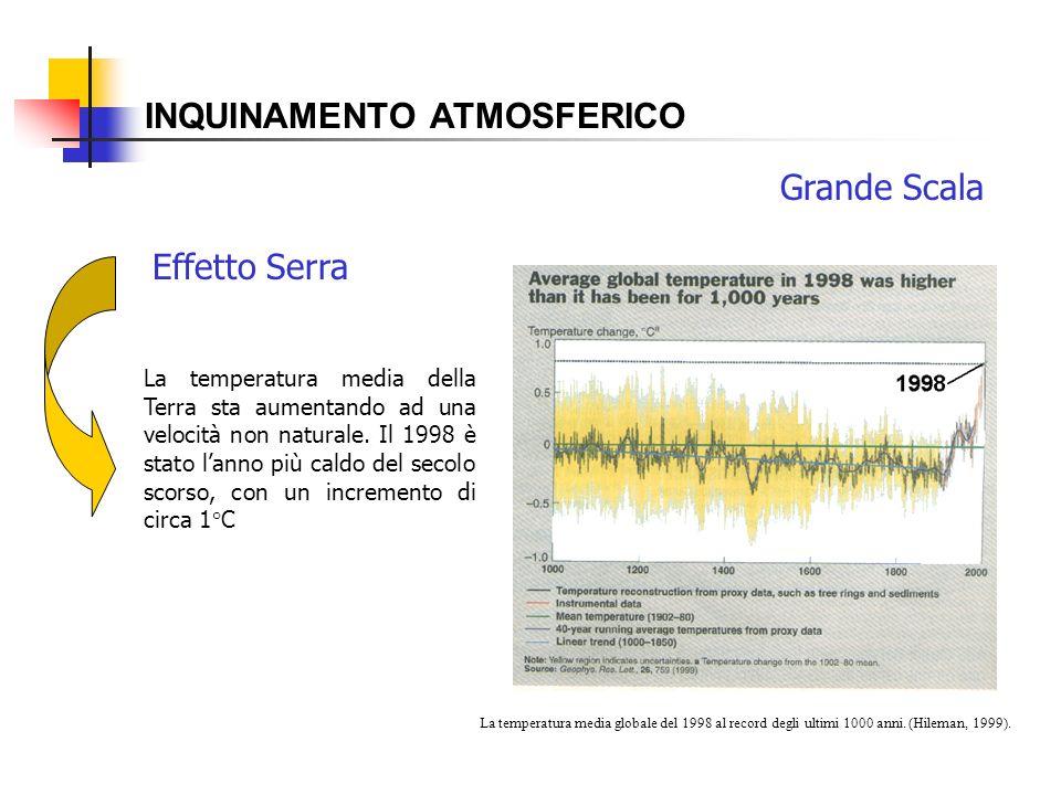 INQUINAMENTO ATMOSFERICO Effetto Serra La temperatura media della Terra sta aumentando ad una velocità non naturale. Il 1998 è stato lanno più caldo d