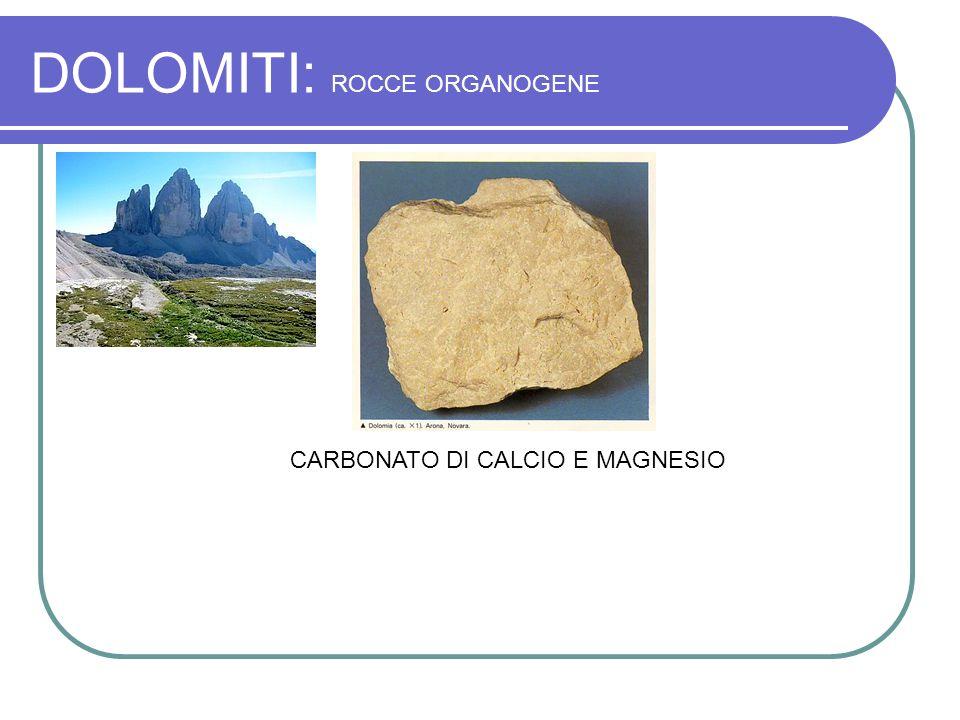 DOLOMITI: ROCCE ORGANOGENE CARBONATO DI CALCIO E MAGNESIO