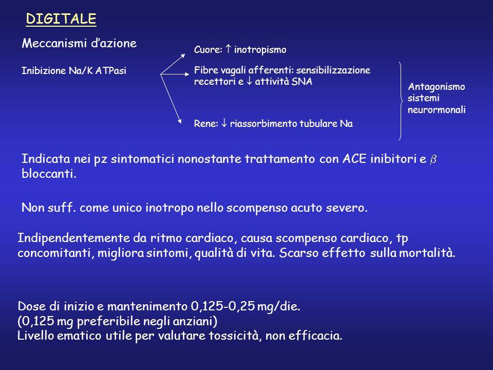 DIGITALE Meccanismi dazione Indicata nei pz sintomatici nonostante trattamento con ACE inibitori e bloccanti. Inibizione Na/K ATPasi Cuore: inotropism