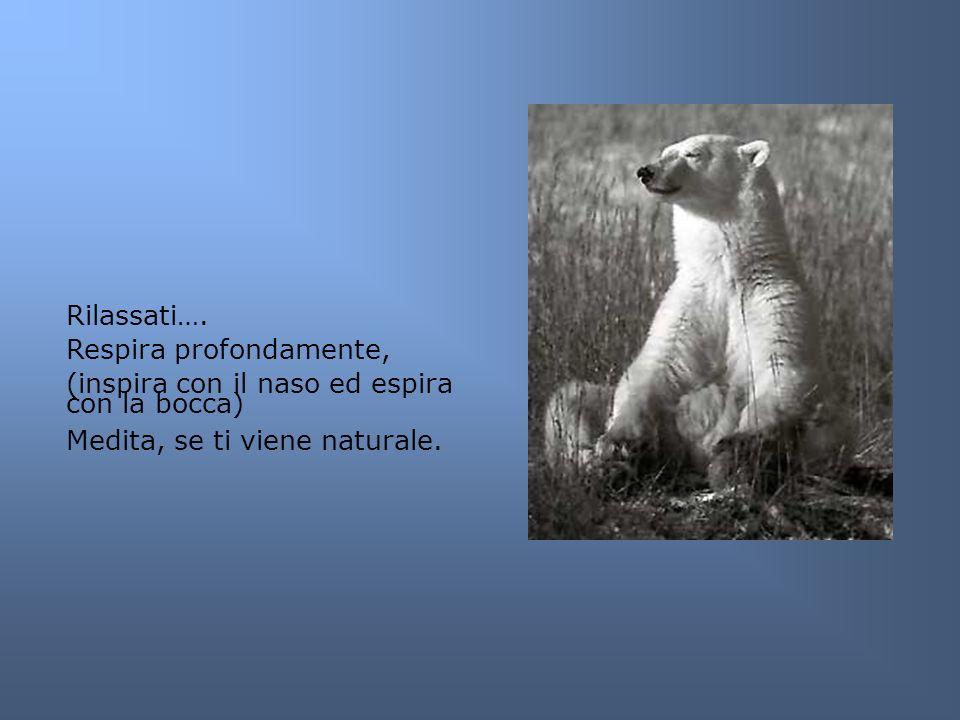 Rilassati…. Respira profondamente, (inspira con il naso ed espira con la bocca) Medita, se ti viene naturale.