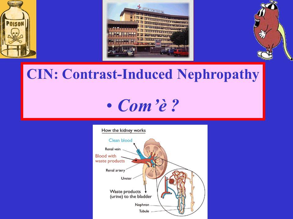 STUDI CLINICI: Metanalisi della sicurezza renale dello iodixanolo vs mdc ipo-osmolari Mc Cullough et al.