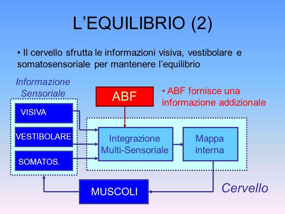 LEQUILIBRIO (2) MUSCOLI Cervello Il cervello sfrutta le informazioni visiva, vestibolare e somatosensoriale per mantenere lequilibrio VISIVA VESTIBOLA
