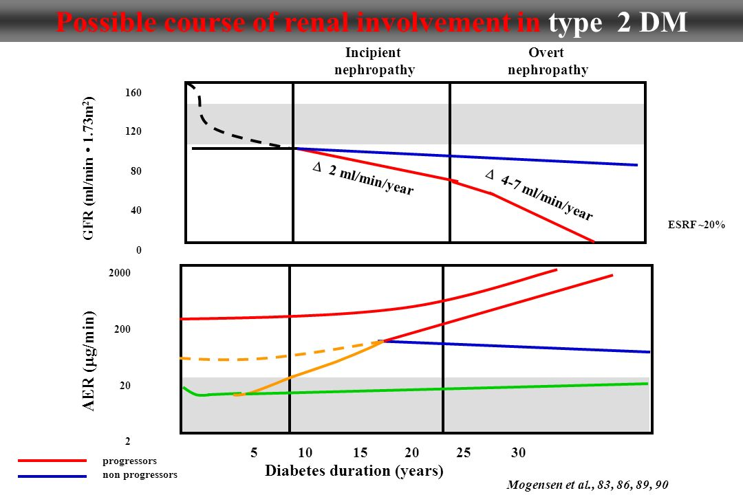 Possible course of renal involvement in type 2 DM progressors non progressors 5 10 15 20 25 30 160 120 80 40 0 5 10 15 20 25 30 2000 200 20 2 Diabetes duration (years) AER ( g/min) GFR (ml/min 1.73m 2 ) Incipient nephropathy Overt nephropathy 2 ml/min/year 4-7 ml/min/year Mogensen et al., 83, 86, 89, 90 ESRF ~20%