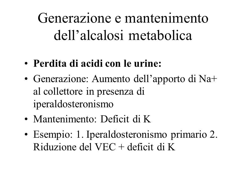 Generazione e mantenimento dellalcalosi metabolica Perdita di acidi dallo spazio extracellulare: Generazione: Shift di acidi nelle cellule Mantenimento: Grave carenza di K+ Esempio: Tutte le cause di carenza di K+