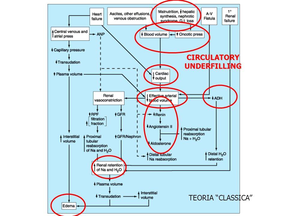 CIRCULATORY UNDERFILLING TEORIA CLASSICA