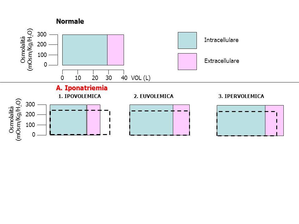 Intracellulare Extracellulare 300 200 100 0 Osmolalità (mOsm/Kg/H 2 O) 0 10 20 30 40 VOL (L)Normale 300 200 100 0 Osmolalità (mOsm/Kg/H 2 O) A. Iponat