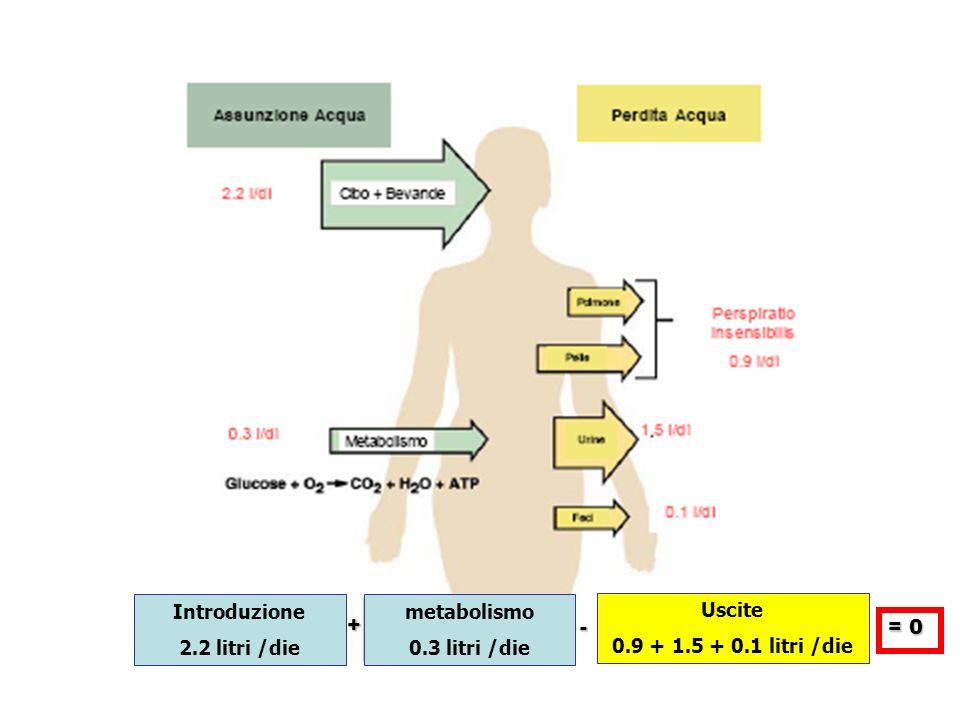 Ipernatriemia(Na >135 mEq/L, POsm >290mOsm/Kg H2O) IperNA IpovolemicheIperNA IsovolemicheIperNA Ipervolemiche Sodiuria <10 mEq/L>20 mEq/L Soluzioni ISOtoniche di Na e poi Ipotoniche Diarrea osmotica Diuresi osmotica Sodiuria <10 mEq/L>20 mEq/L Aument.