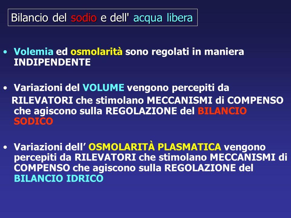 Volemia ed osmolarità sono regolati in maniera INDIPENDENTE Variazioni del VOLUME vengono percepiti da RILEVATORI che stimolano MECCANISMI di COMPENSO