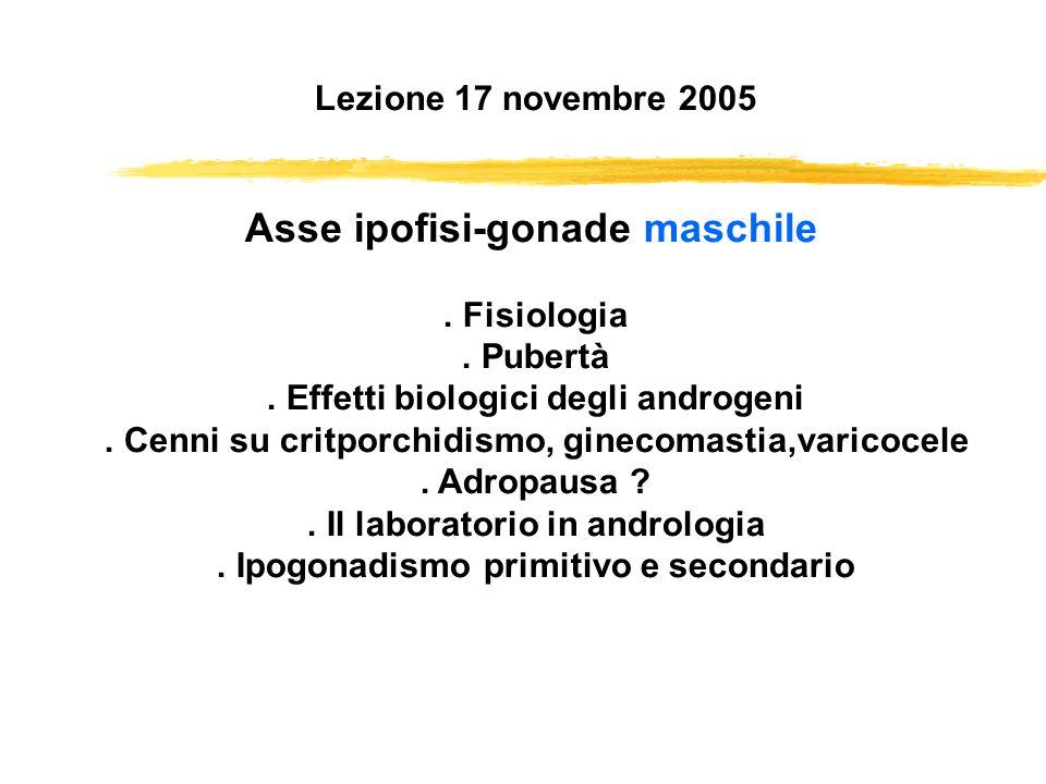 Lezione 17 novembre 2005 Asse ipofisi-gonade maschile. Fisiologia. Pubertà. Effetti biologici degli androgeni. Cenni su critporchidismo, ginecomastia,