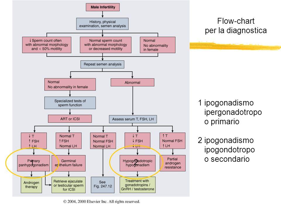 Flow-chart per la diagnostica 2 1 1 ipogonadismo ipergonadotropo o primario 2 ipogonadismo ipogondotropo o secondario