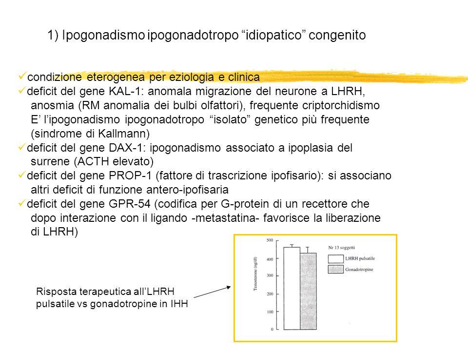 1) Ipogonadismo ipogonadotropo idiopatico congenito condizione eterogenea per eziologia e clinica deficit del gene KAL-1: anomala migrazione del neuro