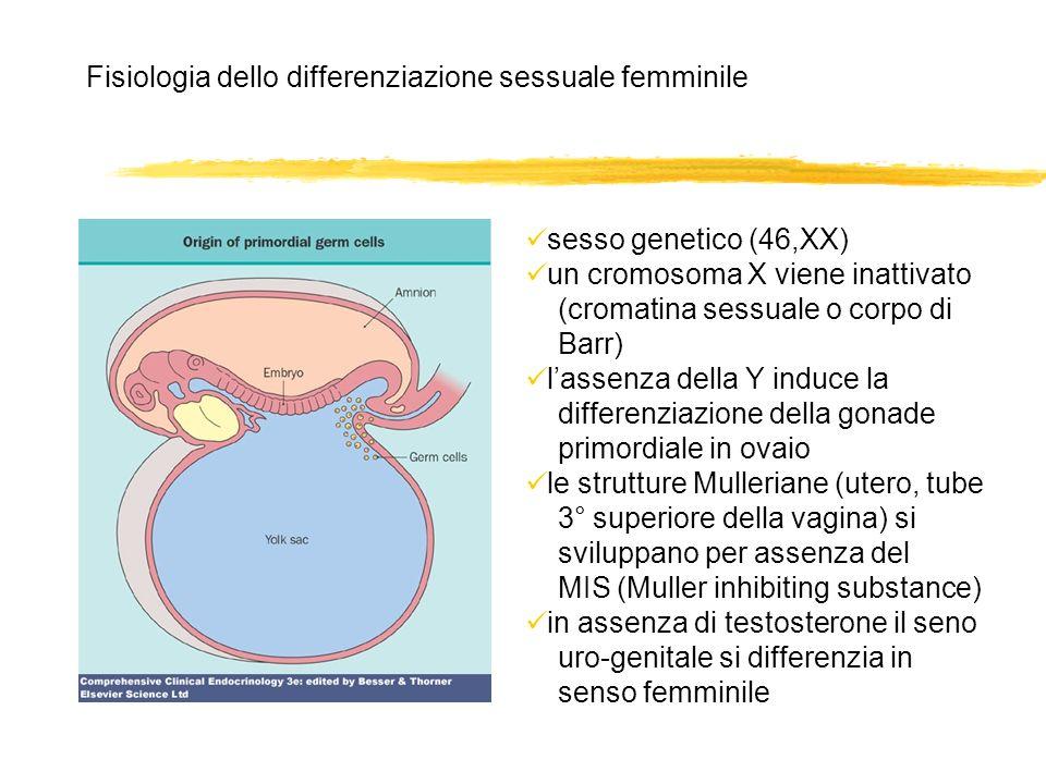 Fisiologia dello differenziazione sessuale femminile sesso genetico (46,XX) un cromosoma X viene inattivato (cromatina sessuale o corpo di Barr) lasse