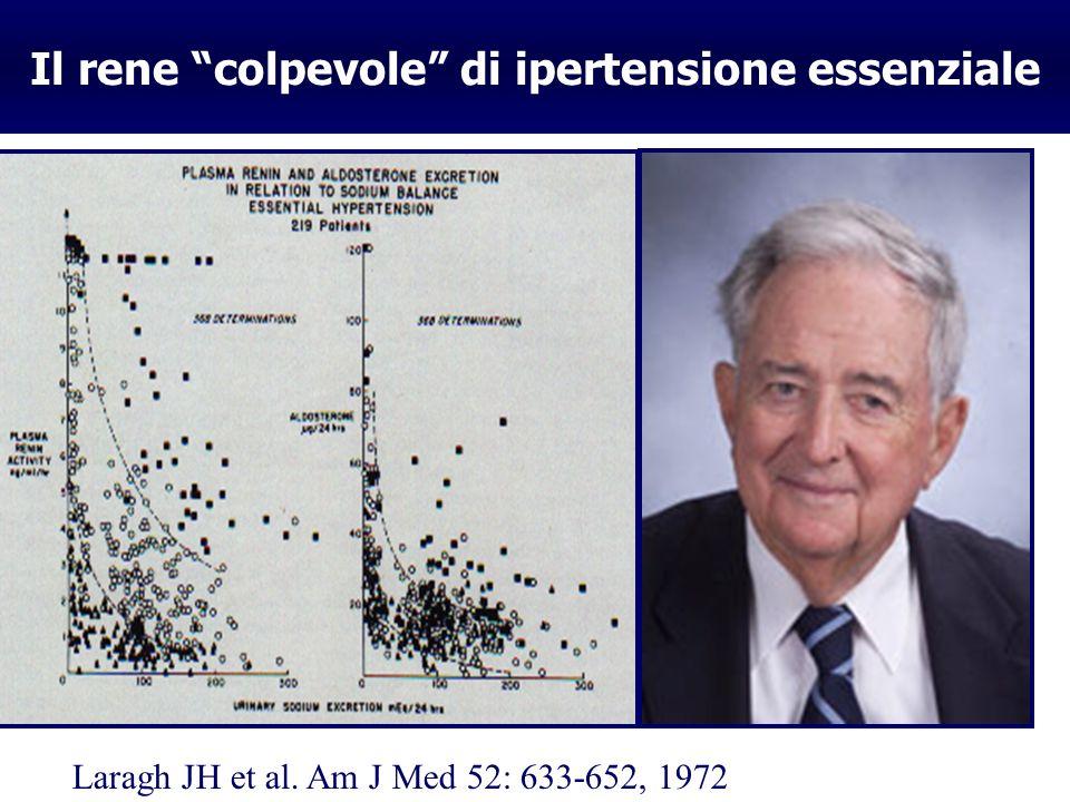 Il rene colpevole di ipertensione essenziale A.Guyton G.Bianchi J. Laragh B. Brenner Laragh JH et al. Am J Med 52: 633-652, 1972