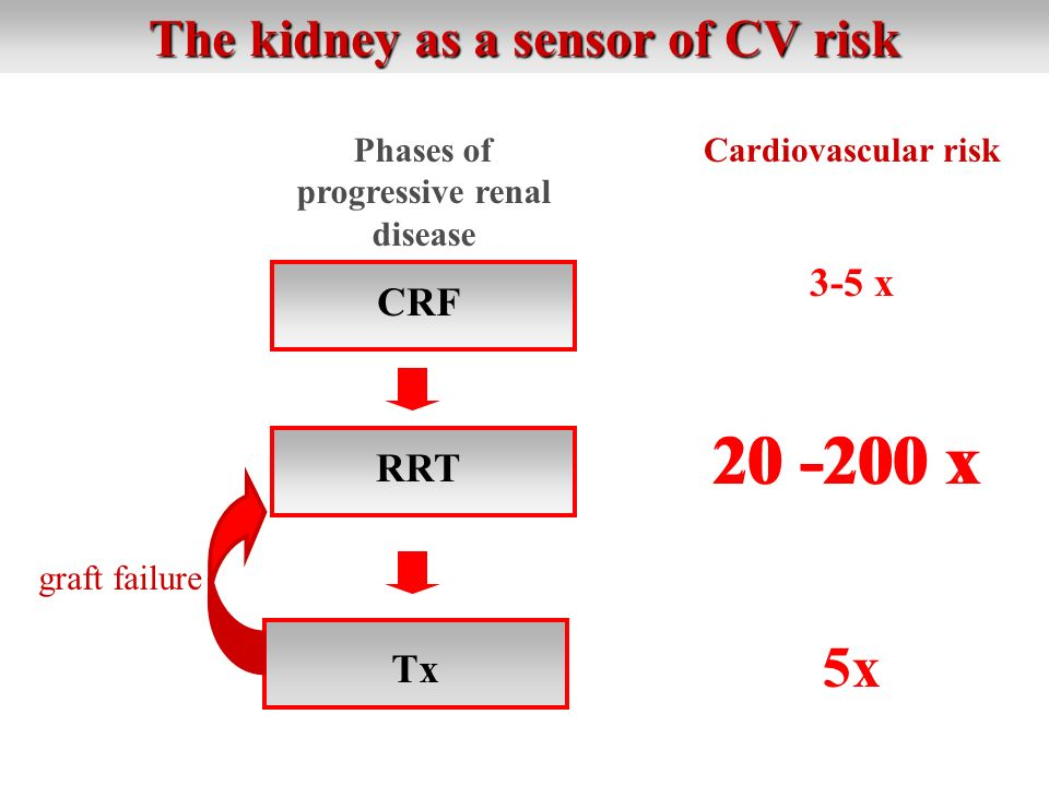 The kidney as a sensor of CV risk Cardiovascular risk 3-5 x CRF RRT Tx graft failure Phases of progressive renal disease 20 -200 x 5x 20 -200 x
