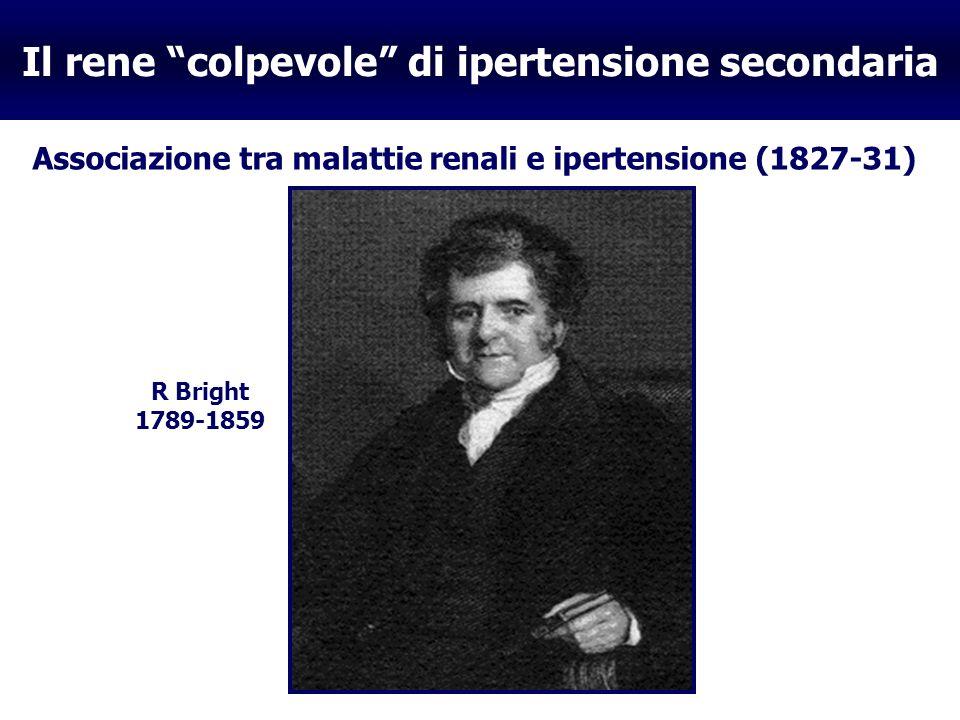 Il rene colpevole di ipertensione secondaria Evidenza di sostanze pressorie nel tessuto e/o nella vena renale (1898-1940) RENINA (1898) IPERTENSINA (1939) / ANGIOTENSINA (1940) R.A.A.Tigerstedt E.