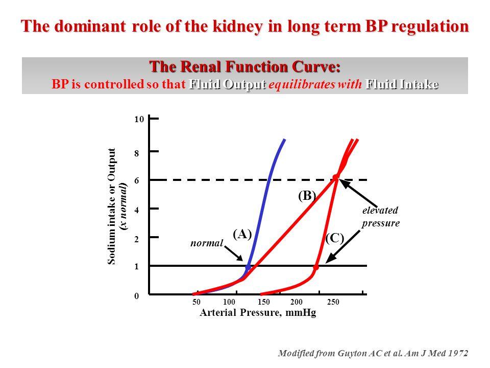 Albuminuria (ug/min) GFR (ml/min/1.73m 2 ) From Parving H-H, Am J Kidney Dis 1993 -2 -1 0 1 2 3 4 5 6 7 years 1250 750 250 GFR: -11.3 105 95 85 75 65 55 45 125 115 105 95 MABP (mmHg) Start of antihypertensive treatment GFR: -3.5 GFR: -1.2 GFR: -1.3 Blood Pressure reduction conveys renal protection