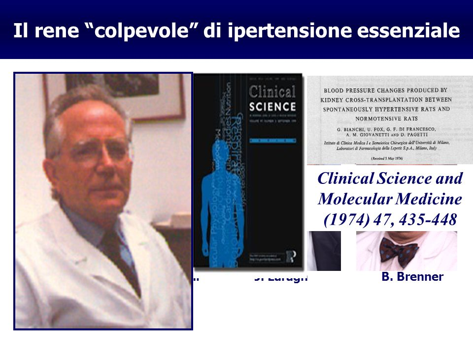 Il rene colpevole di ipertensione essenziale A.Guyton G.Bianchi J. Laragh B. Brenner Clinical Science and Molecular Medicine (1974) 47, 435-448