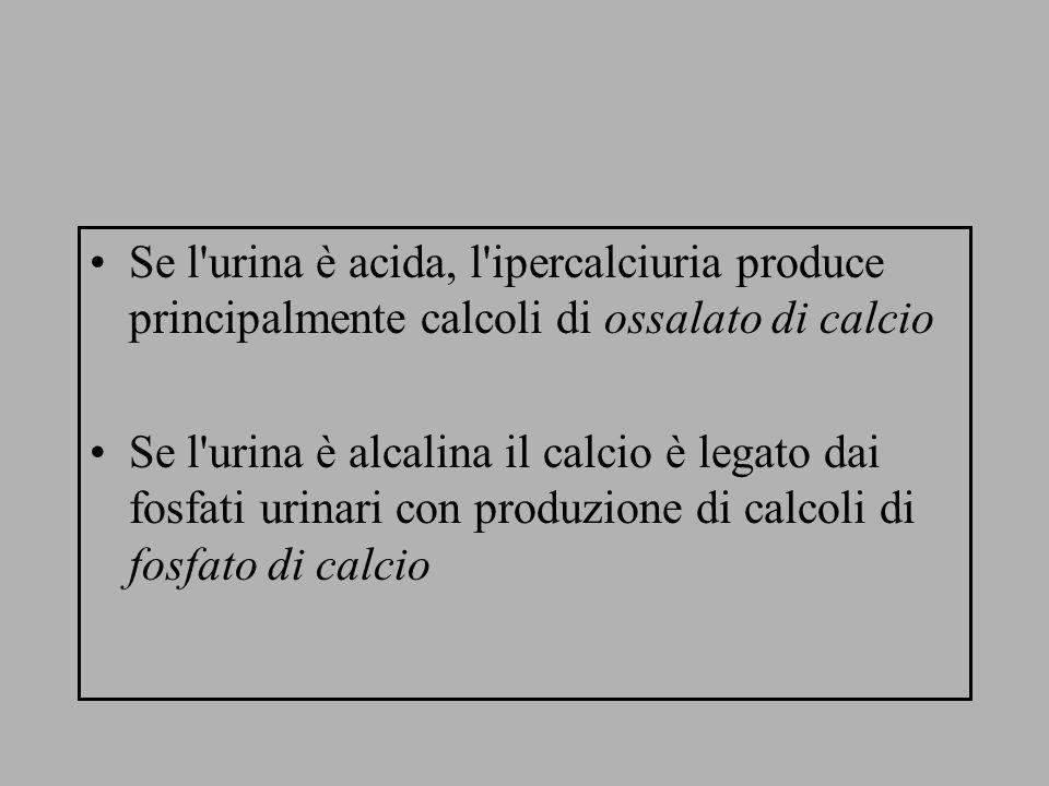 Se l'urina è acida, l'ipercalciuria produce principalmente calcoli di ossalato di calcio Se l'urina è alcalina il calcio è legato dai fosfati urinari