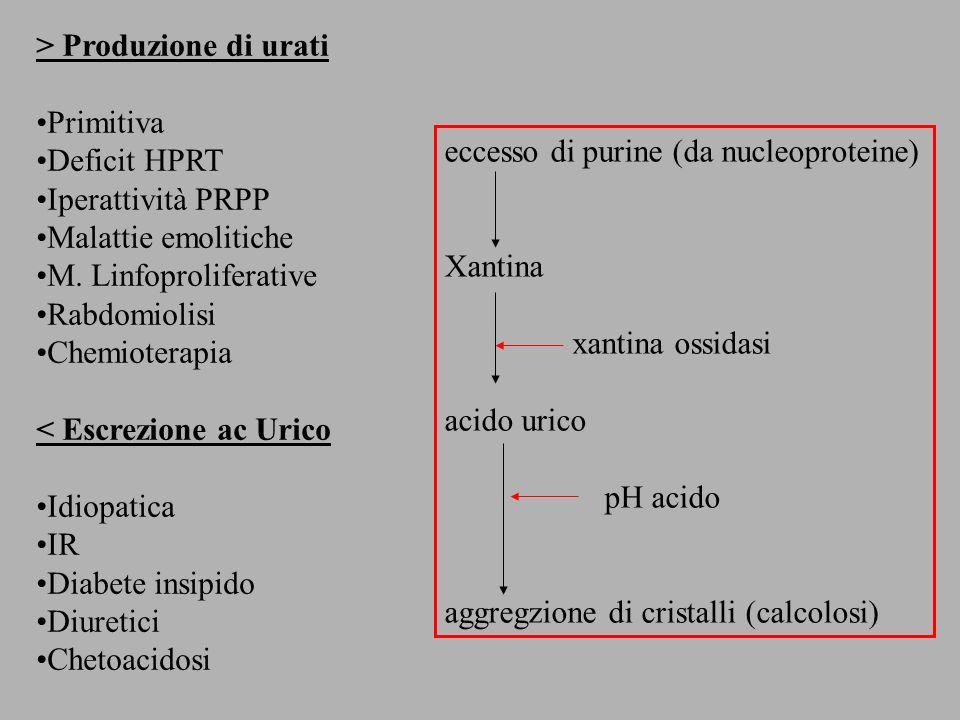> Produzione di urati Primitiva Deficit HPRT Iperattività PRPP Malattie emolitiche M. Linfoproliferative Rabdomiolisi Chemioterapia < Escrezione ac Ur