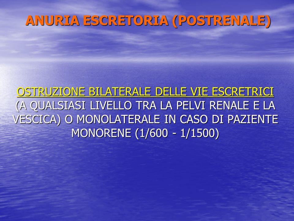 ANURIA ESCRETORIA (POSTRENALE) OSTRUZIONE BILATERALE DELLE VIE ESCRETRICI (A QUALSIASI LIVELLO TRA LA PELVI RENALE E LA VESCICA) O MONOLATERALE IN CAS