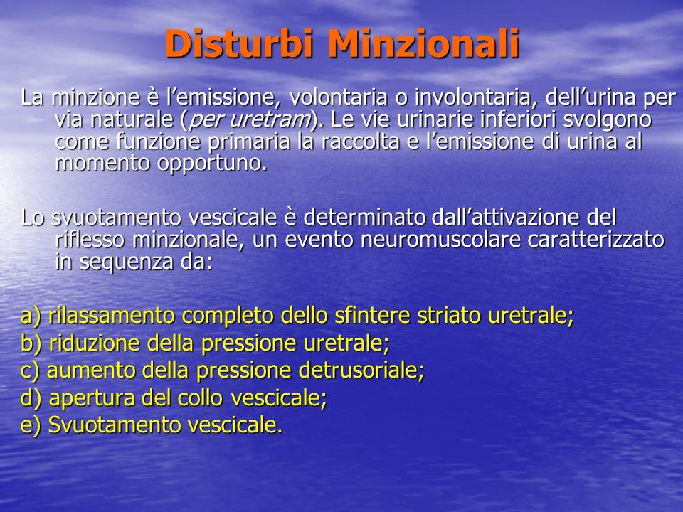 Disturbi Minzionali La minzione è lemissione, volontaria o involontaria, dellurina per via naturale (per uretram). Le vie urinarie inferiori svolgono
