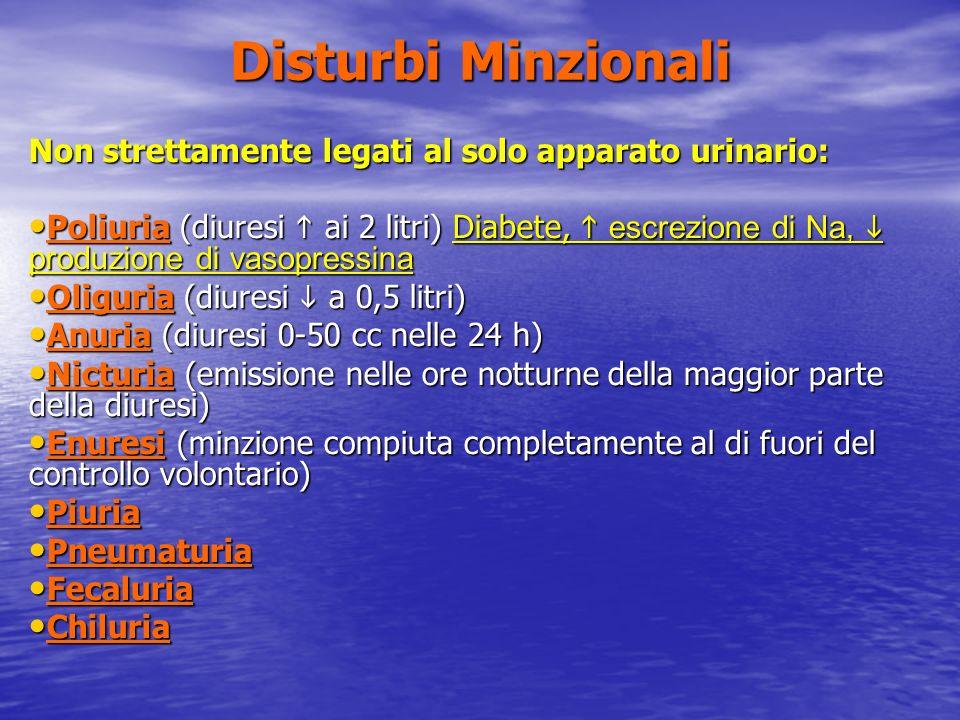 Disturbi Minzionali Non strettamente legati al solo apparato urinario: Poliuria (diuresi ai 2 litri) Diabete, escrezione di Na, produzione di vasopres