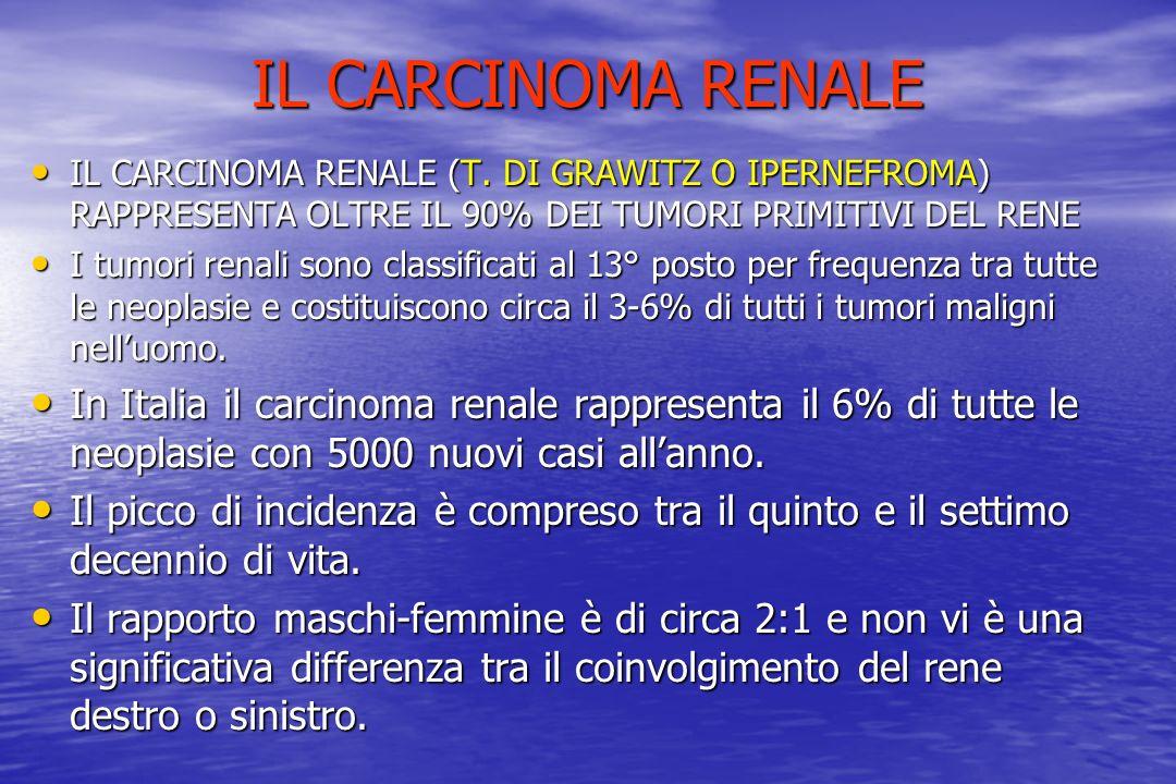 IL CARCINOMA RENALE IL CARCINOMA RENALE (T. DI GRAWITZ O IPERNEFROMA) RAPPRESENTA OLTRE IL 90% DEI TUMORI PRIMITIVI DEL RENE IL CARCINOMA RENALE (T. D