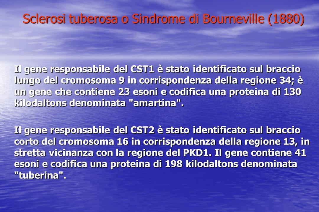 Sclerosi tuberosa o Sindrome di Bourneville (1880) Il gene responsabile del CST1 è stato identificato sul braccio lungo del cromosoma 9 in corrisponde