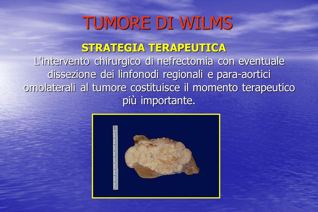 STRATEGIA TERAPEUTICA L'intervento chirurgico di nefrectomia con eventuale dissezione dei linfonodi regionali e para-aortici omolaterali al tumore cos