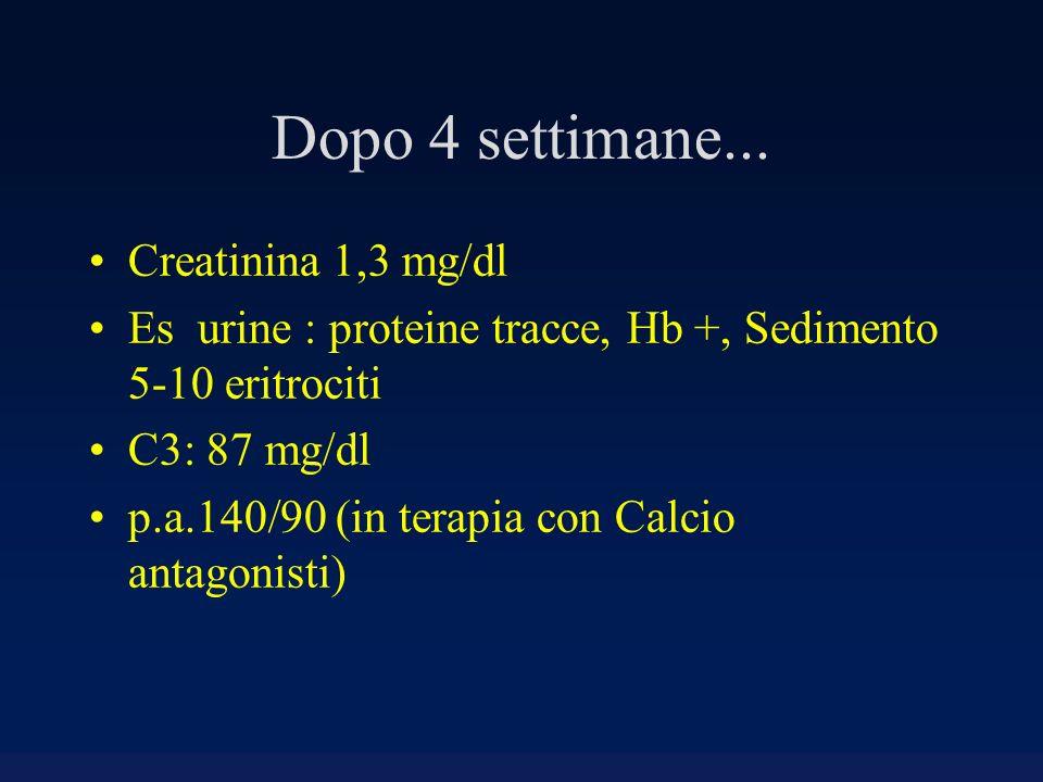Dopo 4 settimane... Creatinina 1,3 mg/dl Es urine : proteine tracce, Hb +, Sedimento 5-10 eritrociti C3: 87 mg/dl p.a.140/90 (in terapia con Calcio an