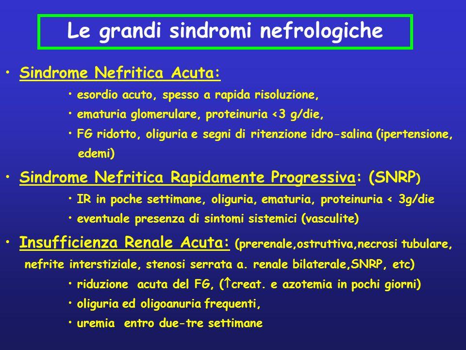 Sindrome Nefritica Acuta: esordio acuto, spesso a rapida risoluzione, ematuria glomerulare, proteinuria <3 g/die, FG ridotto, oliguria e segni di rite