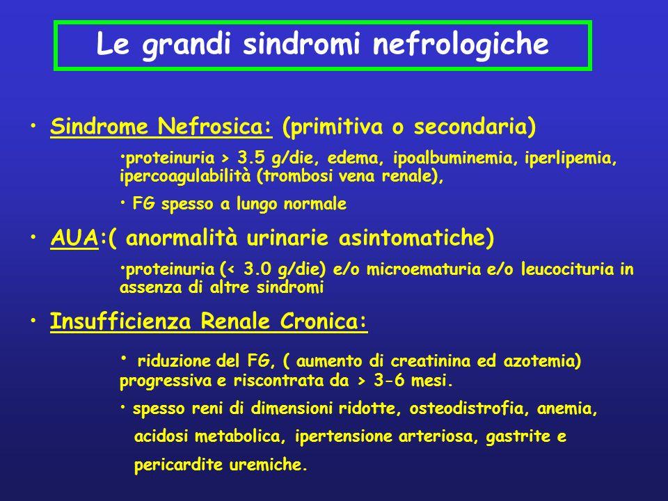 Sindrome Nefrosica: (primitiva o secondaria) proteinuria > 3.5 g/die, edema, ipoalbuminemia, iperlipemia, ipercoagulabilità (trombosi vena renale), FG