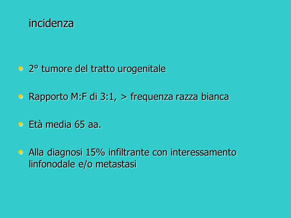 incidenza 2° tumore del tratto urogenitale 2° tumore del tratto urogenitale Rapporto M:F di 3:1, > frequenza razza bianca Rapporto M:F di 3:1, > frequ