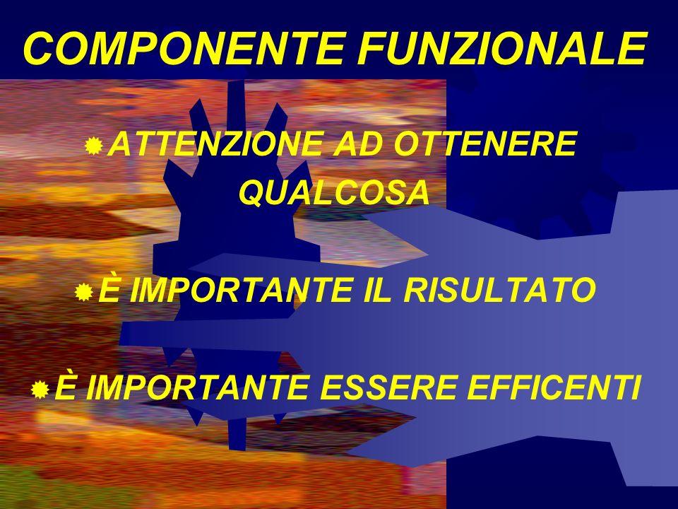 COMPONENTE FUNZIONALE ATTENZIONE AD OTTENERE QUALCOSA È IMPORTANTE IL RISULTATO È IMPORTANTE ESSERE EFFICENTI