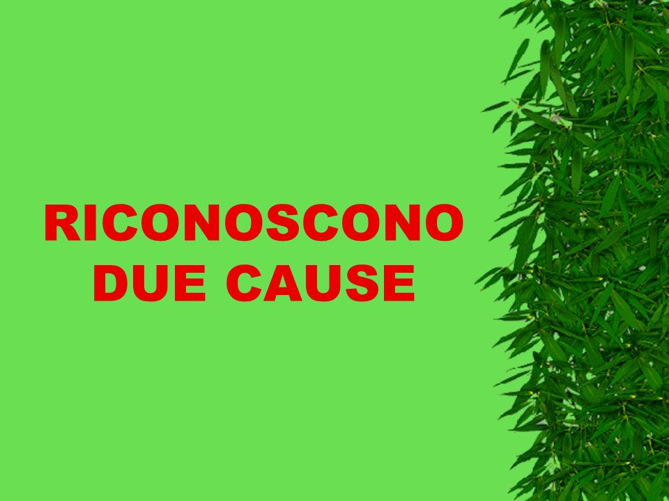 RICONOSCONO DUE CAUSE