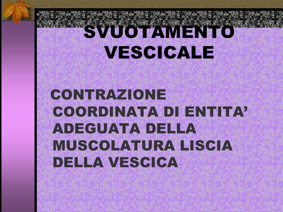 SVUOTAMENTO VESCICALE CONTRAZIONE COORDINATA DI ENTITA ADEGUATA DELLA MUSCOLATURA LISCIA DELLA VESCICA