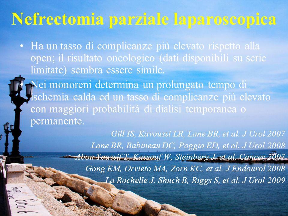 cisti complex5nefroma cistico4 oncocitoma11AML7 ascesso1mielolipoma1 adenoma1 uroteliale4origine mesenchimale3 a cellule chiare104cromofobo6 variante cistica2papillare10 carcinoma mucinoso1sarcomatoide1