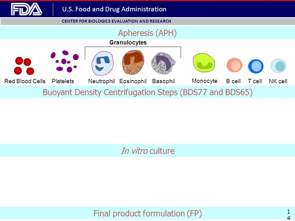 U.S. Food and Drug Administration CENTER FOR BIOLOGICS EVALUATION AND RESEARCH B cellT cell Monocyte NK cell BasophilRed Blood CellsEosinophilNeutroph