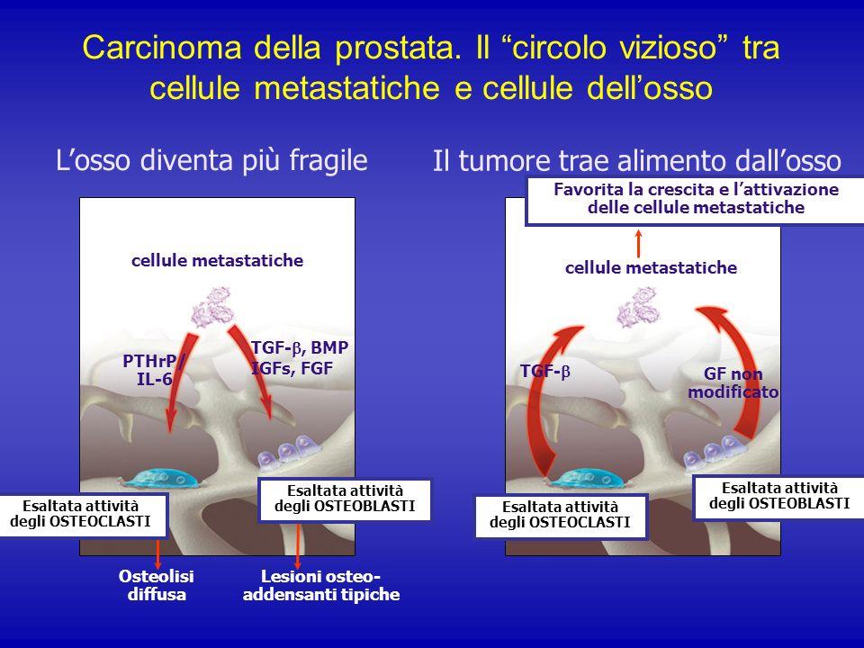 Losso diventa più fragile Il tumore trae alimento dallosso Favorita la crescita e lattivazione delle cellule metastatiche cellule metastatiche Osteoli