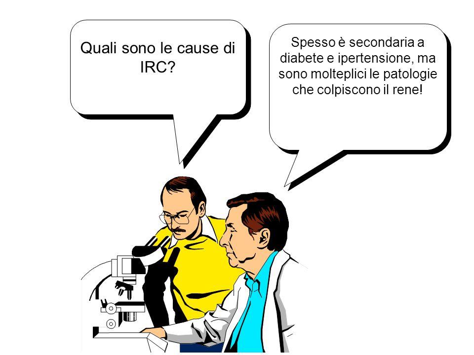 Quali sono le cause di IRC? Spesso è secondaria a diabete e ipertensione, ma sono molteplici le patologie che colpiscono il rene!