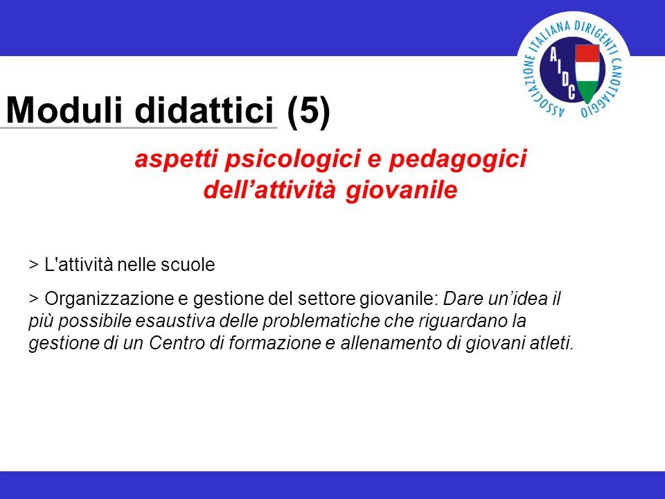 Moduli didattici (5) aspetti psicologici e pedagogici dellattività giovanile > L'attività nelle scuole > Organizzazione e gestione del settore giovani
