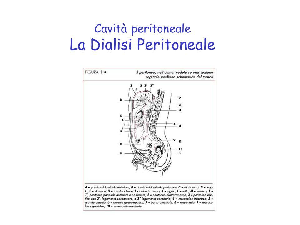 La membrana peritoneale è costituita da: un monostrato di cellule piatte su una membrana basale uno strato di tessuto connettivale di variabile spessore e struttura che comprende allinterno di una matrice connettivale cellule vasi sanguigni vasi linfatici fibre nervose La membrana peritoneale La Dialisi Peritoneale