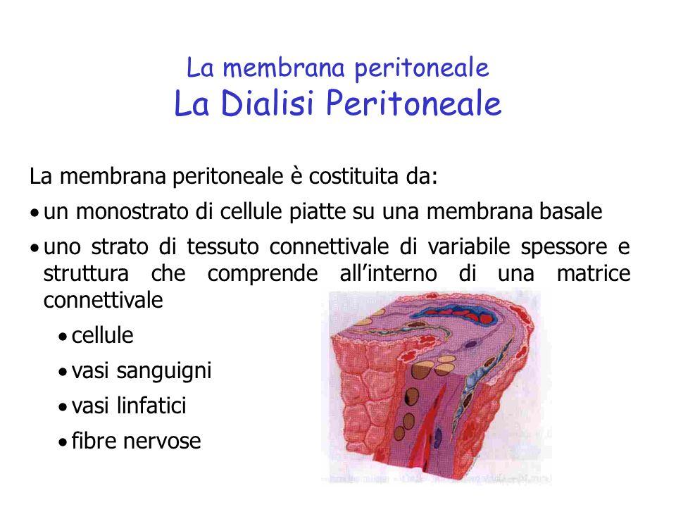Un filmato sulle Dialisi Peritoneale Schematicamente…