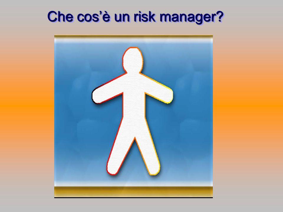 Che cosè un risk manager?